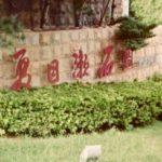 親日すぎるよ。台湾に「夏目漱石」という住宅街があるって本当?